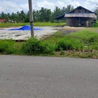 (BRI LIMBOTO) : 1 (satu) Paket Bidang Tanah Seluas 8248M & 1981M SHM 06/Satria& SHM 5/Satria di Kabupaten Gorontalo