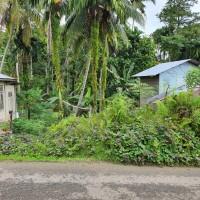 PT BRI KC GUNUNGSITOLI : Tanah seluas 172 m2, SHM No.347 An.Toni Hotman Telaumbanua, di Desa Onozitoli Sifaoroasi, Kec. Gunungsitoli