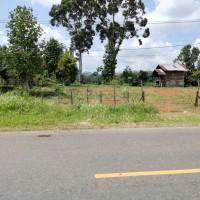 1 bidang tanah dengan total luas 5056 m<sup>2</sup> di Kabupaten Bungo