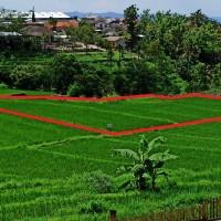 1 bidang tanah dengan total luas 2303 m<sup>2</sup> di Kabupaten Karanganyar