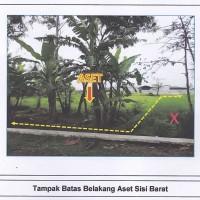 BPR YIS - 1 bidang tanah pertanian dengan total luas 3650 m2 SHM  03388, di Desa Randusari, Kec. Teras, Kab. Boyolali