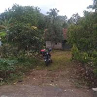 1 bidang tanah dengan total luas 560 m<sup>2</sup> di Kabupaten Brebes