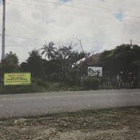 3 bidang tanah dengan total luas 10008 m2 di Kota Baubau