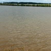 BRI Skg; 1 bidang tanah dengan total luas 54126 m2 di Kabupaten Wajo