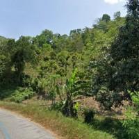 1 bidang Tanah luas 11.014 m2,terletak di Desa Kalora,Poso Pesisir Utara,Poso SHM No.17 an.I Nyoman Suarta (BRI POSO)