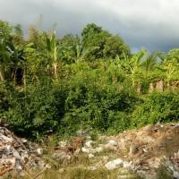 KPP PMA 5 (23-09): 1 (satu) bidang tanah SHM No. 1700 luas 250 m2 di Desa Baktiseraga, Kec. Buleleng, Kab. Buleleng
