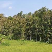 1 bidang tanah dengan total luas 580 m<sup>2</sup> di Kabupaten Boyolali