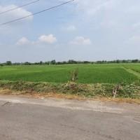 1 bidang tanah dengan total luas 1000 m<sup>2</sup> di Kabupaten Boyolali