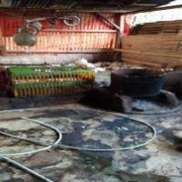 1 bidang tanah dengan total luas 110 m<sup>2</sup> di Kabupaten Kuningan