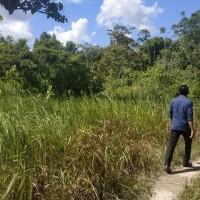 2. Sebidang tanah dengan total luas 9.892 m2 SHM No. 00751/Lamomea  di Kabupaten Konawe Selatan, Prov.Sultra.