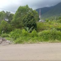 BRI Ruteng - 1 bidang tanah dengan total luas 240 m2 di Kabupaten Manggarai