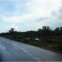 BNI RR Jakarta Wil 12: b. 4 bidang tanah dengan total luas 49893 m2 di Jalan Raya Batu Rusa – Air Anyir Desa Batu Rusa, Bangka
