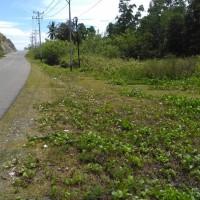 PNM Cabang Palu: 1 bidang tanah dengan total luas 433 m2 di Kabupaten Banggai