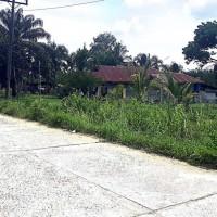 Bank Sumut Cab. Kota Pinang: 2. 1 bidang tanah dengan luas 12967 m2 berikut bangunan di Kabupaten Labuhan Batu Selatan