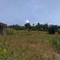 Mandiri RRCR X, Lot 2b:1 bidang tanah dengan total luas 1014 m2 di Kabupaten Poso