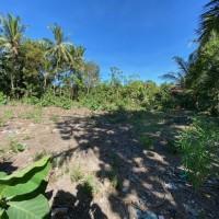 BPR Nusamba Rambipuji - Sebidang tanah dengan total luas 1.476 m2, SHM No. 637/Ampel, Kab. Jember