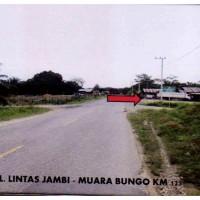 1 bidang tanah dengan total luas 11145 m2 di Kabupaten Batang Hari