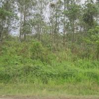 1 bidang tanah dengan total luas 8945 m<sup>2</sup> di Kabupaten Kota Baru