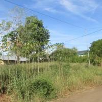 BRI Larantuka - 1 bidang tanah dengan total luas 1820 m2 di Kabupaten Lembata