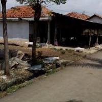 [BTPNTegal]tanah & bangunan SHM no 319  luas 499 m2 di Desa Petunjungan,Kec.Bulakamba,Kab.Brebes