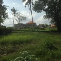 PT.BPD Bali Cabang Bangli:1 bidang tanah dengan total luas 825 m2 di Kabupaten Gianyar