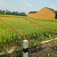 1 bidang tanah dengan total luas 366 m<sup>2</sup> di Kabupaten Kulon Progo
