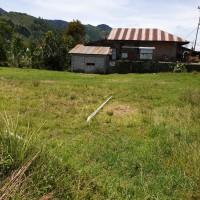 1. BRI Takengon : Sebidang tanah seluas 1.521 M2 berikut bangunan diatasnya, di Desa Paya Reje Tami Delem, Kec. Kebayakan, Takengon