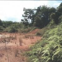 BNI : 1 bidang tanah SHM No.907 luas 6.730 m2 di Desa Pagarawan Kec.Merawang Kabupaten Bangka