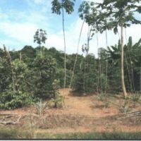 BNI : 1 bidang tanah SHM No.935 luas 9.412 m2 di Desa Pagarawan Kec.Merawang Kab. Bangka