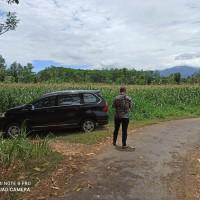 BRI Probolinggo 2) : 1 bidang tanah dengan total luas 6967 m2 di Kabupaten Probolinggo