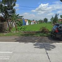 BRI Probolinggo 3) : 1 bidang tanah dengan total luas 6084 m2 di Kabupaten Probolinggo