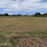BRI Probolinggo 4) : 1 bidang tanah dengan total luas 6863 m2 di Kabupaten Probolinggo