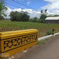 BRI Probolinggo 5) : 1 bidang tanah dengan total luas 4303 m2 di Kabupaten Probolinggo
