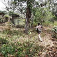 BNI KANWIL 02 - 1 bidang tanah dengan total luas 9812 m2 di Kabupaten Karimun