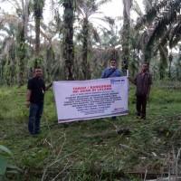 BRI SIJUNJUNG: 1 bidang tanah dengan total luas 10000 m2 di Kabupaten Dharmasraya