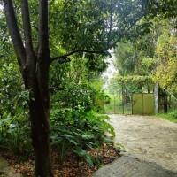 2 bidang tanah dengan total luas 5200 m2 berikut bangunan di Kabupaten Kuningan