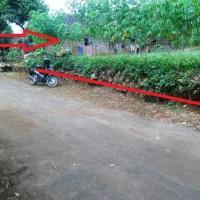 PNM Madiun Lot 6 a: 1 bidang tanah SHM 334 dengan total luas 707 m2 di Kabupaten Magetan