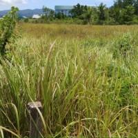 1.Jual satu paket 2 bidang tanah dengan total luas 5924 m2 SHM No. 00099/Puday & SHM No. 00111/Puday di Kota Kendari