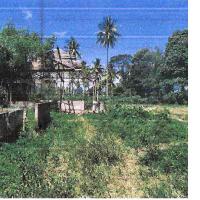 [BMI] 1. Sebidang tanah luas 2785m2 berikut turutannya sesuai SHM No.483 di Nag Mungka Kec Mungka