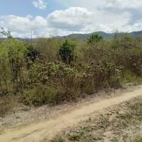 Mandiri RRCR, Lot 1a: 1 bidang tanah dengan total luas 10000 m2 di Kabupaten Sigi