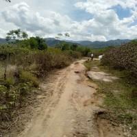 Mandiri RRCR, Lot 1c: 1 bidang tanah dengan total luas 16514 m2 di Kabupaten Sigi