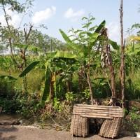 [BRIBrebes]tanah SHM no 2245 luas 3324 m2 di Desa Luwunggede,Kec.Tanjung,Kabupaten Brebes