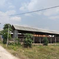 (BRI BANGKALAN) : Sebidang tanah seluas 1132 m2 sesuai SHM 133 berikut bangunan yang berdiri di atasnya di Kabupaten Bangkalan