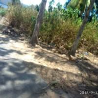 1 (satu) bidang tanah seluas 820 m², SHM No 166, terletak di Desa Pada, Kec. Nubatukan, Kab. Lembata (BRI Larantuka)
