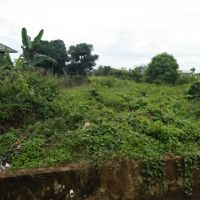 BRI TJ Redep: SHM No: M.129 Lt 2.670m2 di Jalan Kedondong, Kelurahan Gunung Tabur, Kecamatan GunungTabur, Kabupaten Berau