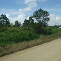 BRI Tj Redep:SHM No. 00243 Lt 243M2 di jalan Murjani III, Kelurahan Gunung Panjang, Kecamatan Tanjung Redeb, Kabupaten Berau