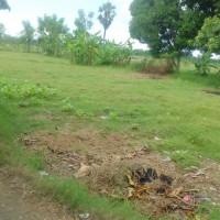 BRI Cabang Sumenep : Tanah seluas 1.471 m2 sesuai SHM No. 396, Desa Banjar Timur, Kec.Gapura, Kab.Sumenep.