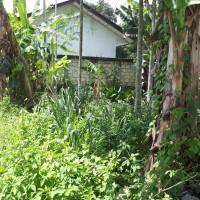 1 bidang tanah kosong luas 2.280 m2 di Desa/Kelurahan Sentani Kota, Kecamatan Sentani, Kabupaten Jayapura