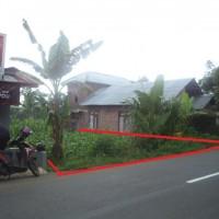 Lelang Eksekusi Ps. 6 UUHT PT PNM Semarang : Sebidang tanah SHM No. 00659 seluas 255 m² di Desa Wonosari - Batang.
