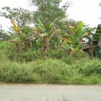 BANK KLATEN {7.11.18} g.sebidang tanah SHM No.575 Luas  644 M2,  di Kel. Tambakboyo, Kec. Tawangsari Kabupaten Sukoharjo